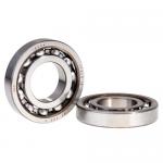 SKF 16004 Bearing, 00.600.0230